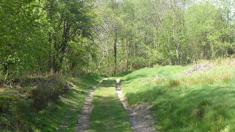tarras walk track