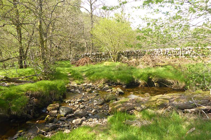 wall and ford near rashiel bridge