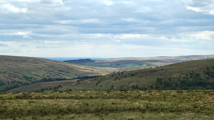 wauchope valley from castle hill
